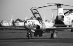 masahiさんが、入間飛行場で撮影した航空自衛隊 T-33Aの航空フォト(飛行機 写真・画像)