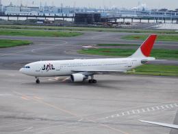 A.MORITAさんが、羽田空港で撮影した日本航空 A300B4-622Rの航空フォト(飛行機 写真・画像)
