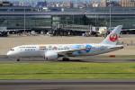 shibu03さんが、羽田空港で撮影した日本航空 787-8 Dreamlinerの航空フォト(飛行機 写真・画像)