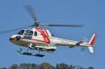 ブルーさんさんが、静岡ヘリポートで撮影した朝日航洋 AS350B Ecureuilの航空フォト(飛行機 写真・画像)