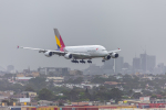 mameshibaさんが、シドニー国際空港で撮影したアシアナ航空 A380-841の航空フォト(飛行機 写真・画像)