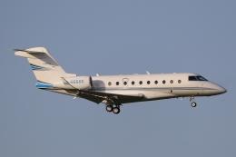 ぽんさんが、成田国際空港で撮影した不明 Gulfstream G280の航空フォト(飛行機 写真・画像)