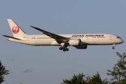 ぽんさんが、成田国際空港で撮影した日本航空 787-9の航空フォト(飛行機 写真・画像)