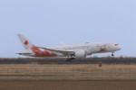 どらいすたーさんが、松島基地で撮影した日本航空 787-8 Dreamlinerの航空フォト(飛行機 写真・画像)