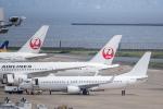 Y-Kenzoさんが、羽田空港で撮影した日本航空 737-846の航空フォト(飛行機 写真・画像)