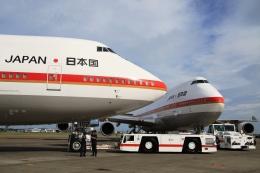 Hiro-hiroさんが、千歳基地で撮影した航空自衛隊 747-47Cの航空フォト(飛行機 写真・画像)