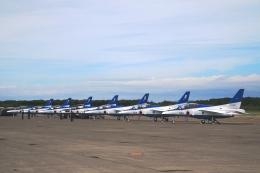 Hiro-hiroさんが、千歳基地で撮影した航空自衛隊 T-4の航空フォト(飛行機 写真・画像)