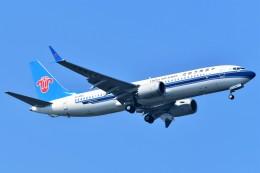 Hiro Satoさんが、スワンナプーム国際空港で撮影した中国南方航空 737-8-MAXの航空フォト(飛行機 写真・画像)