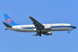 Hiro Satoさんが、スワンナプーム国際空港で撮影した中国南方航空 737-81Bの航空フォト(飛行機 写真・画像)