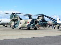 masahiさんが、名古屋飛行場で撮影した航空自衛隊 CH-47Jの航空フォト(飛行機 写真・画像)