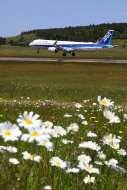 トリトンブルーSHIROさんが、庄内空港で撮影した全日空 A321-211の航空フォト(飛行機 写真・画像)