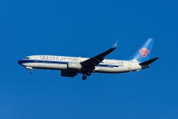 Frankspotterさんが、成田国際空港で撮影した中国南方航空 737-81Bの航空フォト(飛行機 写真・画像)
