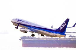 rokko2000さんが、神戸空港で撮影した全日空 737-881の航空フォト(飛行機 写真・画像)