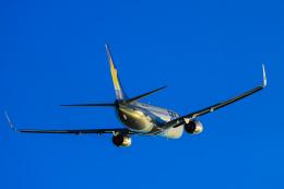rokko2000さんが、神戸空港で撮影したスカイマーク 737-81Dの航空フォト(飛行機 写真・画像)