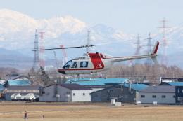 安芸あすかさんが、札幌飛行場で撮影した朝日航洋 206B JetRanger IIの航空フォト(飛行機 写真・画像)