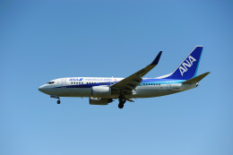 hikanagiさんが、大館能代空港で撮影した全日空 737-781の航空フォト(飛行機 写真・画像)