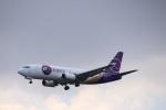 さもんほうさくさんが、成田国際空港で撮影したYTOカーゴ・エアラインズ 737-37Kの航空フォト(飛行機 写真・画像)