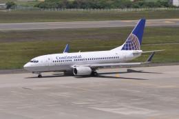 kumagorouさんが、仙台空港で撮影したコンチネンタル航空 737-724の航空フォト(飛行機 写真・画像)