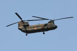 ノビタ君さんが、木更津飛行場で撮影した陸上自衛隊 CH-47Jの航空フォト(飛行機 写真・画像)