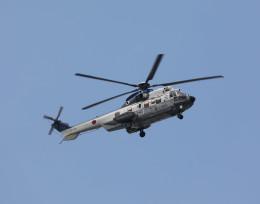 ノビタ君さんが、木更津飛行場で撮影した陸上自衛隊 EC225LP Super Puma Mk2+の航空フォト(飛行機 写真・画像)