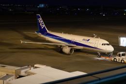 jombohさんが、宮崎空港で撮影した全日空 A320-211の航空フォト(飛行機 写真・画像)