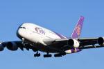 panchiさんが、成田国際空港で撮影したタイ国際航空 A380-841の航空フォト(飛行機 写真・画像)