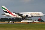 tassさんが、成田国際空港で撮影したエミレーツ航空 A380-861の航空フォト(飛行機 写真・画像)