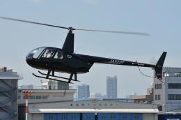 ブルーさんさんが、東京ヘリポートで撮影した日本法人所有 R44 Raven IIの航空フォト(飛行機 写真・画像)