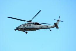 まいけるさんが、東京・浅草上空で撮影したアメリカ海軍 MH-60S Knighthawk (S-70A)の航空フォト(飛行機 写真・画像)