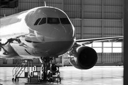 JA8094さんが、ANA機体メンテナンスセンターで撮影した全日空 A320-214の航空フォト(飛行機 写真・画像)