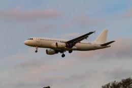 jombohさんが、ロンドン・ヒースロー空港で撮影したブルガリア航空 A320-214の航空フォト(飛行機 写真・画像)