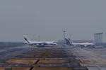 T.Sazenさんが、関西国際空港で撮影したヴォルガ・ドニエプル航空 An-124-100 Ruslanの航空フォト(写真)