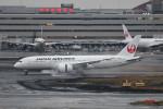 kuro2059さんが、羽田空港で撮影した日本航空 787-8 Dreamlinerの航空フォト(飛行機 写真・画像)