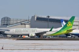サンドバンクさんが、成田国際空港で撮影した春秋航空日本 737-81Dの航空フォト(飛行機 写真・画像)