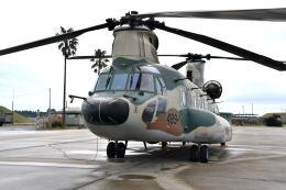 ワイエスさんが、新田原基地で撮影した航空自衛隊 CH-47J/LRの航空フォト(飛行機 写真・画像)