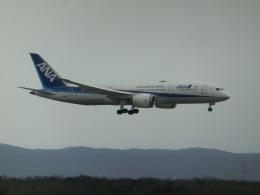 ヒロリンさんが、新千歳空港で撮影した全日空 787-8 Dreamlinerの航空フォト(飛行機 写真・画像)