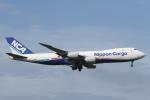 安芸あすかさんが、成田国際空港で撮影した日本貨物航空 747-8KZF/SCDの航空フォト(飛行機 写真・画像)