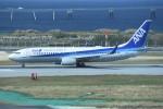 kumagorouさんが、那覇空港で撮影した全日空 737-881の航空フォト(飛行機 写真・画像)