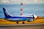 rokko2000さんが、関西国際空港で撮影した全日空 737-781の航空フォト(飛行機 写真・画像)