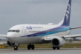 KANTO61さんが、那覇空港で撮影した全日空 737-881の航空フォト(飛行機 写真・画像)