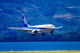 rokko2000さんが、長崎空港で撮影した全日空 737-881の航空フォト(飛行機 写真・画像)
