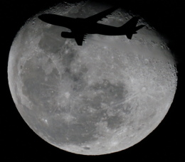 soucanflyさんが、羽田空港で撮影したハワイアン航空 A330-243の航空フォト(飛行機 写真・画像)