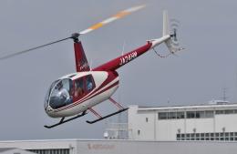 ブルーさんさんが、東京ヘリポートで撮影した日本法人所有 R44 Astroの航空フォト(飛行機 写真・画像)