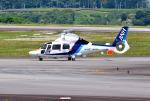 mojioさんが、静岡空港で撮影したオールニッポンヘリコプター AS365N3 Dauphin 2の航空フォト(飛行機 写真・画像)