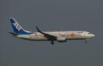 soucanflyさんが、羽田空港で撮影した全日空 737-881の航空フォト(飛行機 写真・画像)