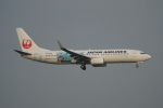 soucanflyさんが、羽田空港で撮影した日本航空 737-846の航空フォト(飛行機 写真・画像)