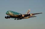 soucanflyさんが、成田国際空港で撮影した全日空 A380-841の航空フォト(飛行機 写真・画像)