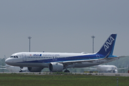 kitayocchiさんが、新千歳空港で撮影した全日空 A320-271Nの航空フォト(飛行機 写真・画像)