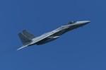 パラノイアさんが、千歳基地で撮影した航空自衛隊 F-15J Eagleの航空フォト(飛行機 写真・画像)