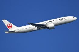NANASE UNITED®さんが、羽田空港で撮影した日本航空 777-246/ERの航空フォト(飛行機 写真・画像)